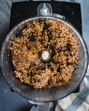 gingersnaps and pecans mixture in food processor
