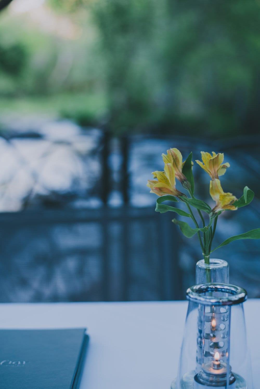 lauberge-flower-1-of-1-684x1024.jpg